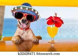 cocktail dog