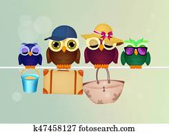 family of owls goes on vacation