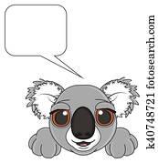happy adult gray koala