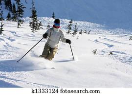 Alpine free ski