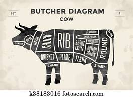 Cut of meat set. Poster Butcher diagram and scheme - Cow. Vintage typographic hand-drawn. Vector illustration.