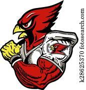 kardinal, footballspieler