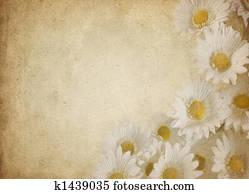 flower parchment