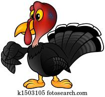 Black Turkey