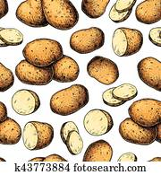 Potato vector seamless pattern. Hand drawn food background. Drawing