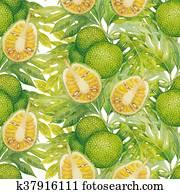 Watercolor breadfruit pattern