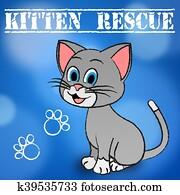 Cataracte Secours Chaton Banque Dimage K1198423