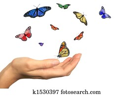 Womans Hand Releasing Beautiful Butterflies