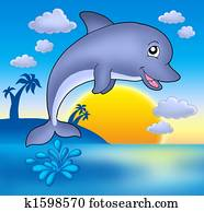 Cute dolphin with sunset
