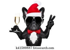 weihnachtsmann, weihnachten, hund