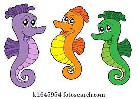 Cute sea horses