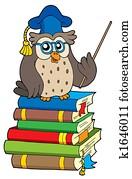 Owl teacher and books