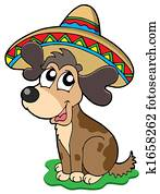 Cute Mexican dog