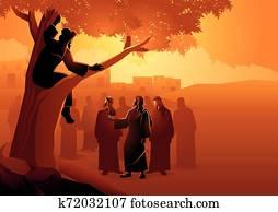Zacchaeus climbed up into a sycamore tree