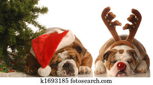 dogs dressed up as santa and rudolph