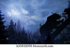 Wilderness Bears and Deer