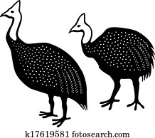 Pintade helmeted sauvage jeu oiseaux depuis afrique image k17713254 fotosearch - Dessin pintade ...