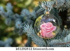Weihnachtsbilder Tannenzweig.Weihnachtsbilder Baum Kugel Hängender Fichte Stock Fotos 82