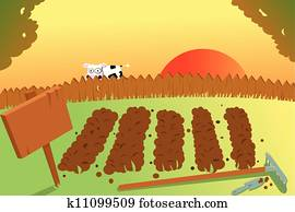 Sunset and Cow on vegetable garden