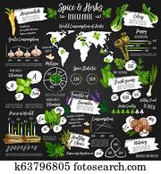 Infographic for spice and herb statistics poster