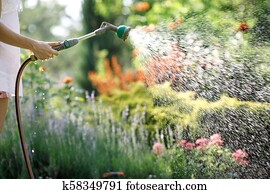 Woman S Hand With Garden Hose Watering Plants Gardening