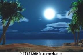 Palm tree island at night