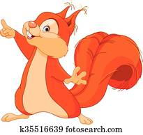 Squirrel Shows