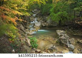 Autumn rill flow.