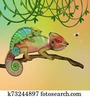 chameleons on branch