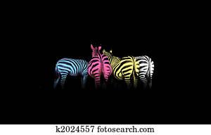 CMYK Colored Zebras