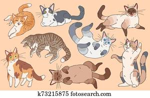 Cute cats. Funny different breeds kittens , pets sleeping and playing cartoon vector characters set