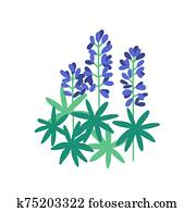 Lupine flat vector illustration. Purple meadow flowers isolated on white background. Flowering plants with petals and green leaves. Botanical items. Herbs, nature, flora. Blossoming wildflowers.