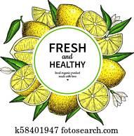 Lemon frame vector drawing. Citrus fruit circle label template.