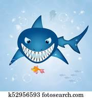 shark in the ocean