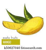 Mango with leaves.
