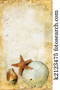 Starfish and Shells on a Grunge Background