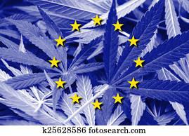 European Union Flag on cannabis background. Drug policy. Legalization of marijuana