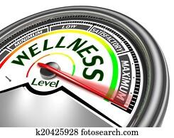 wellness conceptual meter