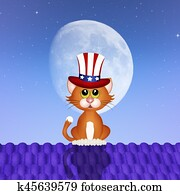 cat celebrate Independence day