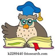 Cartoon owl teacher with book