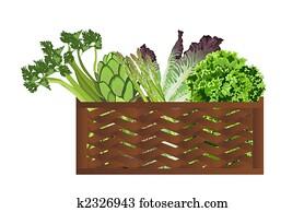 Vegetables in the baske