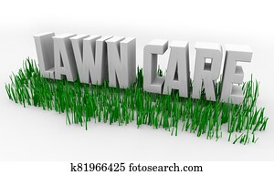 Lawn Care Service Grass Words 3d Illustration