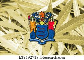 Flag of New Jersey State, on cannabis background