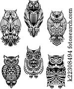 Tribal owl birds set