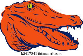 Alligator head