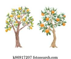 Beautiful set with cute watercolor fruit trees. Stock illustration.