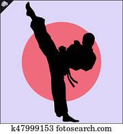 Martial arts. Karate fighter high kick scene.