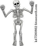 Cartoon Standing Skeleton