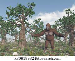 Bigfoot in the wild