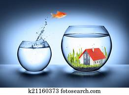 fish find house - real estate